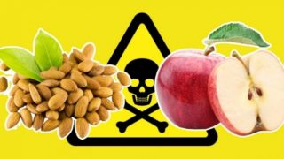 11привычных продуктов, которые опасны вбольшом количестве